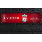 Liverpool Football Club Premier League Champions Banner